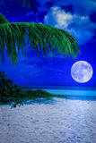 Tropisk strand på natten med en fullmåne Arkivfoton