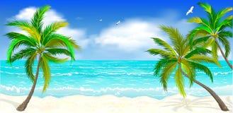 Tropisk strand, palmträd Royaltyfri Foto