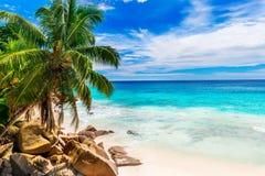 tropisk strand Seychellerna Arkivfoton