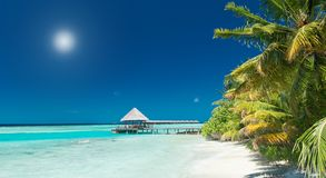 tropisk strandbrygga Royaltyfri Bild