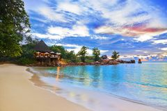 tropisk strandcafesolnedgång Royaltyfria Bilder