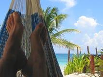 tropisk strandhängmatta royaltyfria foton