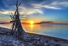 Tropisk strandkoja royaltyfria foton