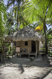 Tropisk strandkoja Arkivbilder