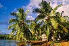 tropisk strandliggande Arkivfoto