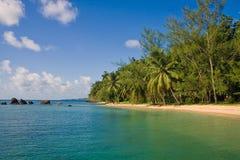 tropisk strandliggande Royaltyfri Bild