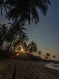Tropisk strandSOLNEDGÅNG PÅ SRI LANKA Royaltyfri Fotografi