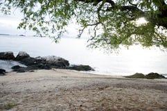 tropisk strandsommar Arkivfoton