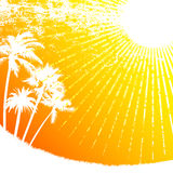 tropisk sun vektor illustrationer