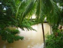 Tropisk trädgård av Thailand Royaltyfri Bild