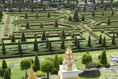 Tropisk trädgård i Pattaya Royaltyfria Bilder