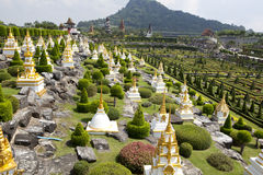 Tropisk trädgård i Pattaya Royaltyfri Fotografi