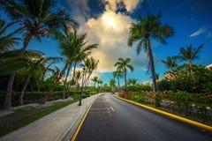 Tropisk trädgård och bana in mot lyxig semesterort i Punta Cana, royaltyfri fotografi