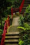 Tropisk trädgård på Monte ovanför den Funchal madeiran arkivbild