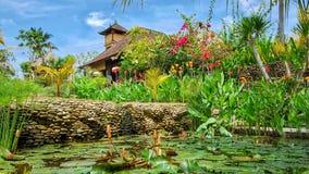 Tropisk trädgård, Ubud, Bali Royaltyfria Foton