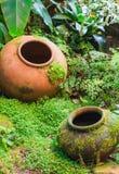 Tropisk trädgårds- garnering för jord- krus royaltyfri foto