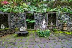 Tropisk trädgårds- madeira Arkivfoto