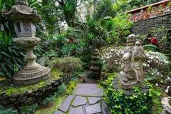 Tropisk trädgårds- madeira Arkivfoton