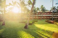 Tropisk trädgård med palmträd och exotiska blommor i strandsemesterort Arkivbild