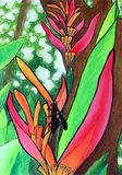 tropisk vattenfärg för blomma royaltyfria foton