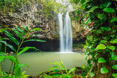 Tropisk vattenfall Royaltyfria Bilder