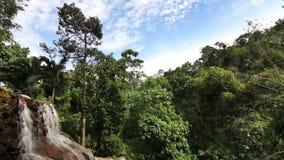 tropisk vattenfall arkivfilmer