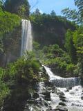 tropisk vattenfall för porslin royaltyfri bild