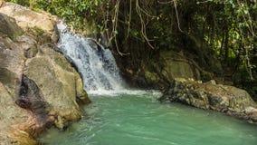 Tropisk vattenfall med den mini- sjööglan arkivfilmer