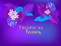 Tropisk vektorbakgrund i Proton Purplel färg, trendbegrepp royaltyfri illustrationer