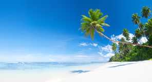 Tropisk vit sandstrand Arkivbild