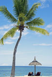 Tropisk vit sandstrand med kokospalmer, Arkivbild