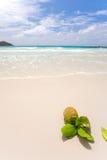 Tropisk vit sandstrand på praslin Arkivfoto