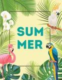 Tropisk vykort med fåglar Arkivfoto