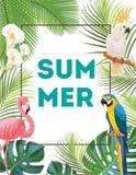 Tropisk vykort med fåglar Royaltyfri Foto