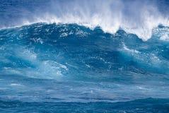 tropisk wave Royaltyfria Foton