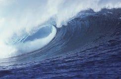 tropisk wave royaltyfria bilder