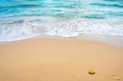tropisk wave för strandhav Royaltyfri Bild