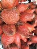 tropisk zalacca för frukt Royaltyfria Foton