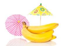tropiska bananer Royaltyfria Bilder