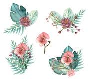 Tropiska blommabuketter royaltyfri illustrationer