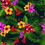 Tropiska blommor för exotisk sommar seamless vektor för modell tappning för gullig illustration för fåglar set stock illustrationer