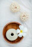 Tropiska blommor för Frangipani med växt- brunnsortprodukter Plumeria Arkivfoto