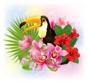 Tropiska blommor och en tukan Royaltyfri Foto