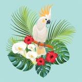 Tropiska blommor och kakadua också vektor för coreldrawillustration Royaltyfri Fotografi