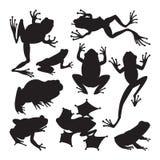 Tropiska djur för grodatecknad film royaltyfri illustrationer