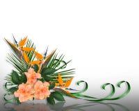 tropiska eleganta blommor för kant stock illustrationer