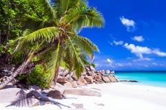 Tropiska ferier i fråna Seychellerna vita sandiga stränder, Praslin Fotografering för Bildbyråer