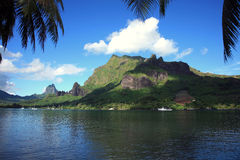 tropiska franska polynesia royaltyfria foton