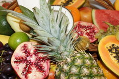 Tropiska frukter Arkivbilder