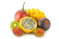 Tropiska frukter Royaltyfria Bilder